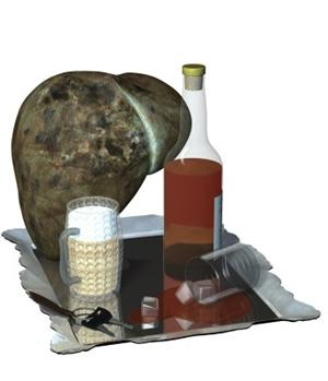 Fettleber Und Alkohol